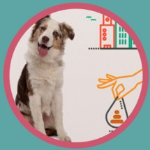 Mascotas Santa Cruz presentacion