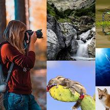 Convocatoria Naturajazz fotografos 2018