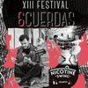 XIII Festival '6 Cuerdas'
