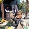 Tablas de San Adrés en Icod de los Vinos 2017