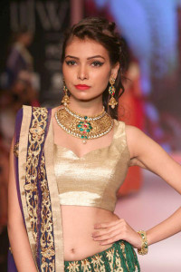 Mahabir Danwar Jewellers And Kik Jewells | Traditional Indian Jewellery at IIJW 2014