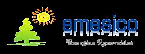 Emesico-logo