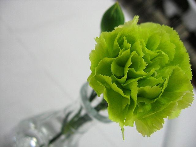 fiori verdi per nozze di smeraldo