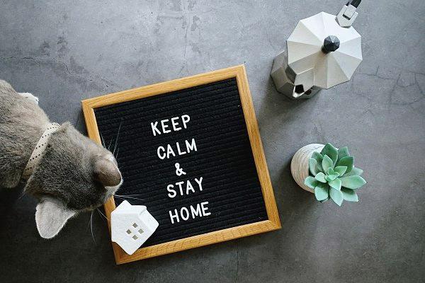 stai-acasa