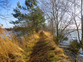 Dagtocht Limburg & de Peel