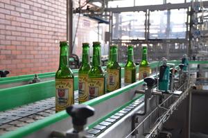 Eigenes Bier: Das Pritzerber Pils