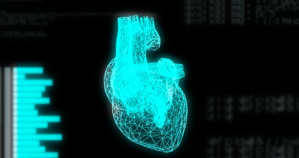ECG biometrics
