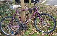 http://s3-eu-west-1.amazonaws.com/bumblebeeauction/201301/Purple Townsend bike (2).JPG