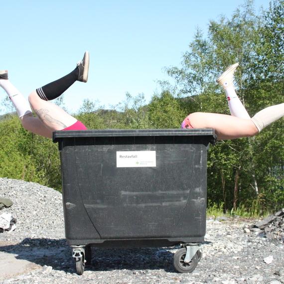 Dumpster1%281%29