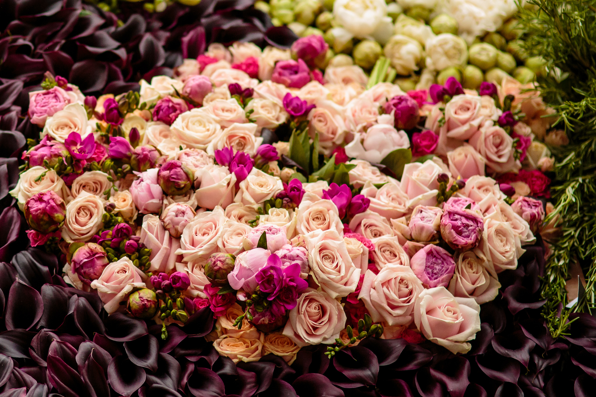 Close up of flowers used in the display