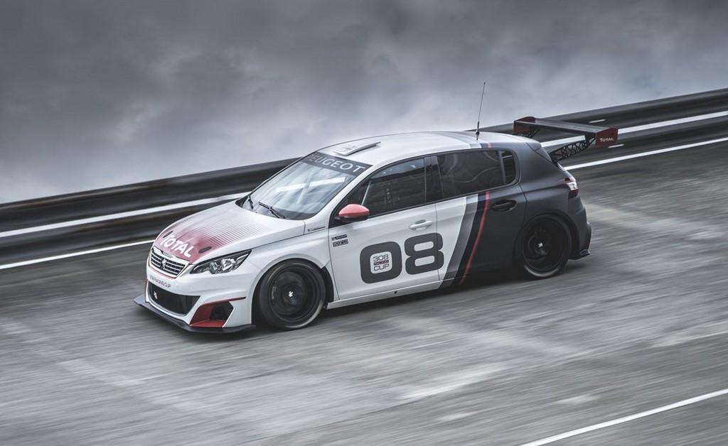 Peugeot 308 Racing Cup Lato Sinistro Pista