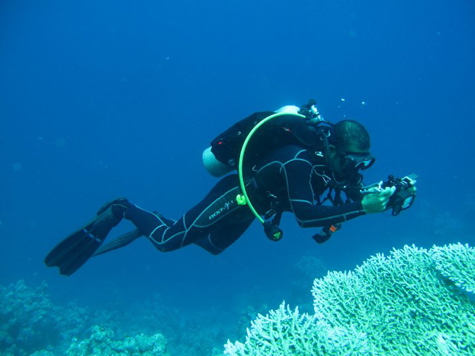 Deep sea diving deep blue sea diving dubai review - Dive deep blue ...
