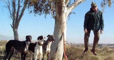 Los galgos del PSOE corren a su particular árbol delahorcado