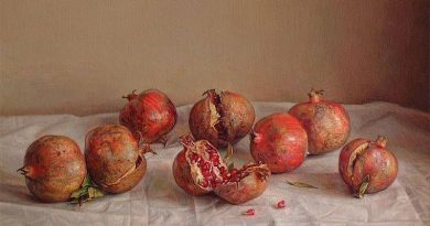 La pintura de los días por Demetrio Reigada: Hoy Claudio Bravo o el prestigio del realismo