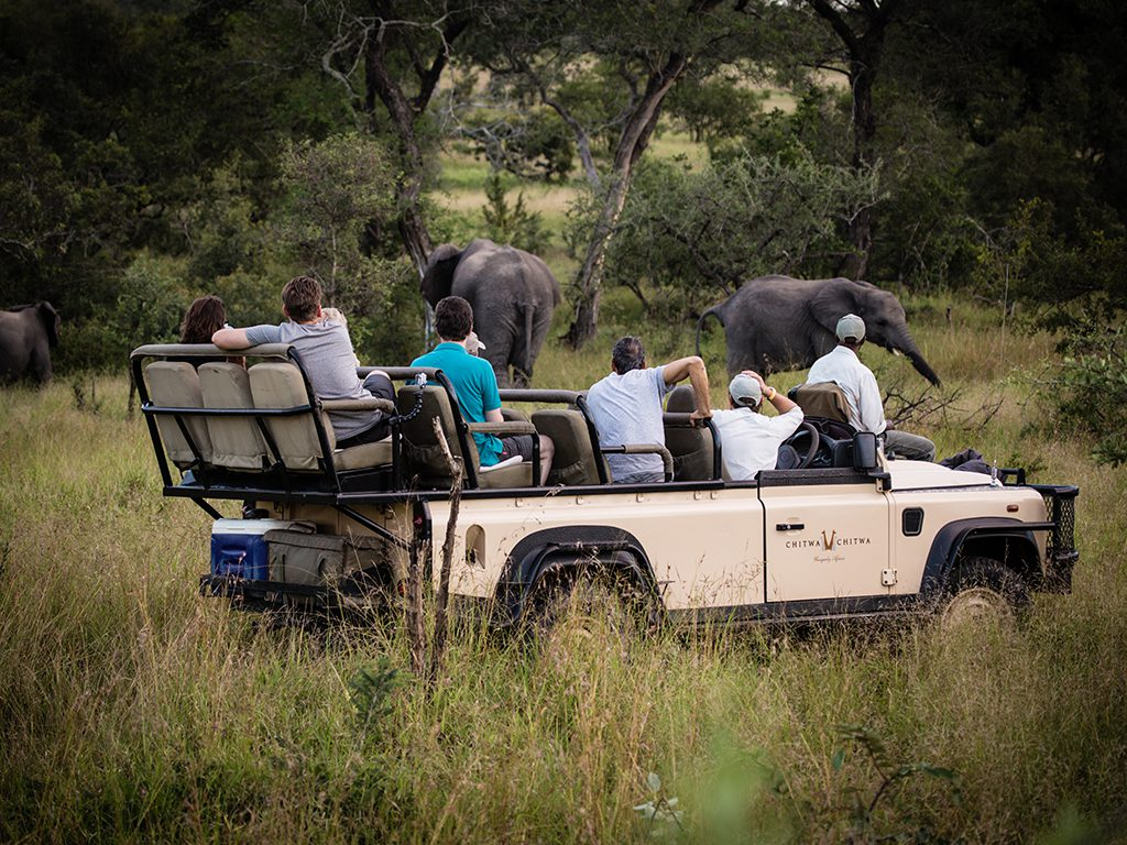It is always a special time being able to sit amongst a herd of elephant and observe.
