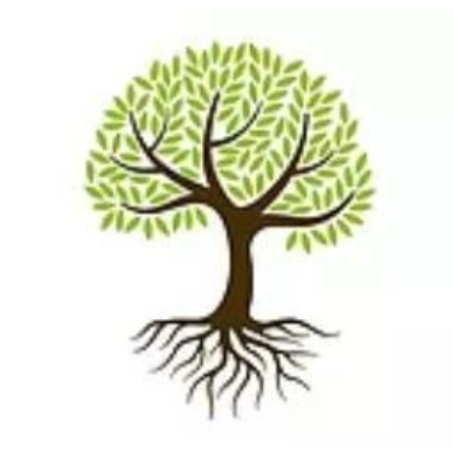 Tree of Life Coaching - Zoe Spooner