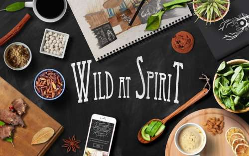 Wild At Spirit logo