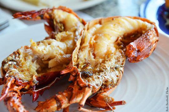 Degusta el buen marisco en el Restaurante Kaialde ¡Elige entre la mariscada especial o la sin límites!