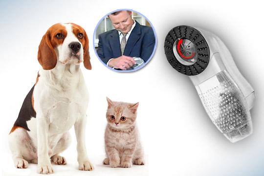 Aspirador mascotas