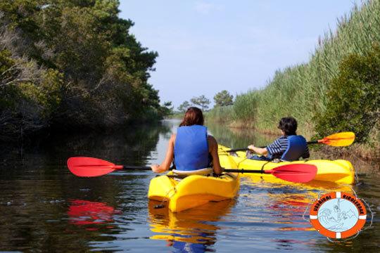 Travesía en kayak por la Reserva de Urdaibai ¡Diviértete practicando deporte y disfrutando de la naturaleza!