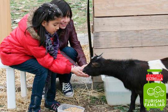 Disfruta de un día de granja con paseo en burro o excursión para niños o familias ¡Elegido en 2017 como uno de los 3 destinos de turismo familiar de Vitoria-Gasteiz!