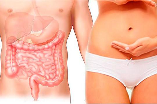 Elimina toxinas y siéntete mejor con una hidroterapia de colón en el centro Hidrodiet ¡La manera más indolora e higiénica de regular tu organismo!