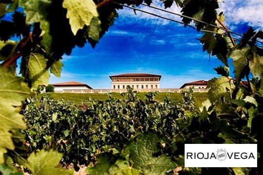 Pasa un día diferente en pareja o con amigos con una visita a la Bodega Rioja Vega con cata incluida ¡Descubre todos los secretos de la uva!