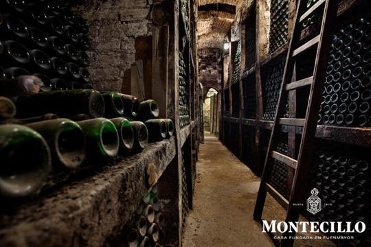 Visita completa a las instalaciones de la bodega + cata de vino + picoteo + botella de crianza en Bodegas Montecillo