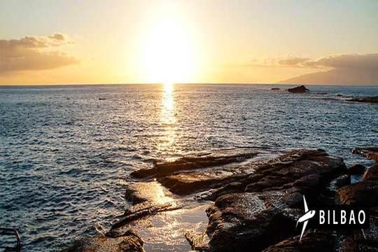 Febrero y marzo a Tenerife: Vuelo desde Bilbao + 7 noches en estudio