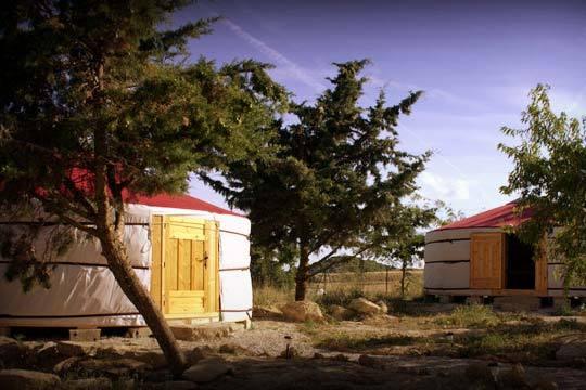 Disfruta de una escapada única en una Yurta en Tafalla ¡El ecoturismo te espera en Campo de Reyes!