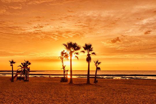 Disfruta de las maravillas de Cádiz en verano con 7 noches en hotel 3* y régimen de media pensión para 2 adultos y un niño ¡En primera línea de playa!