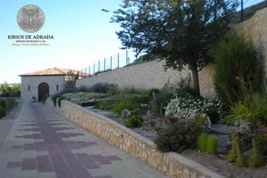 Descubre el apasinoante mundo del vino con una visita con cata en la Bodega Adrada Ecológica, en la Ribera del Duero ¡Y con opción a ruta entre viñedos y almuerzo!