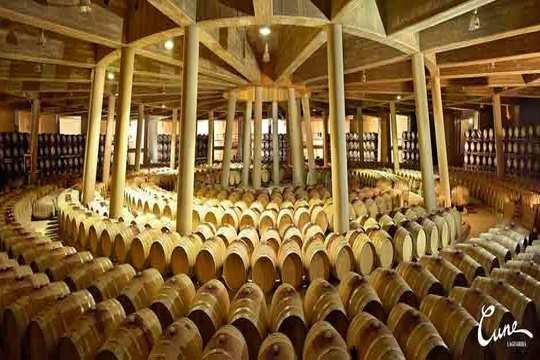 Visita a Bodega Viña Real con cata + picoteo ¡a 5 minutos de Logroño!