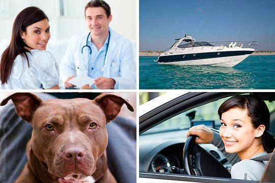 Aprovecha y sácate el certificado médico psicotécnico para carné de conducir, embarcación, animales...¡Para una o dos licencias!