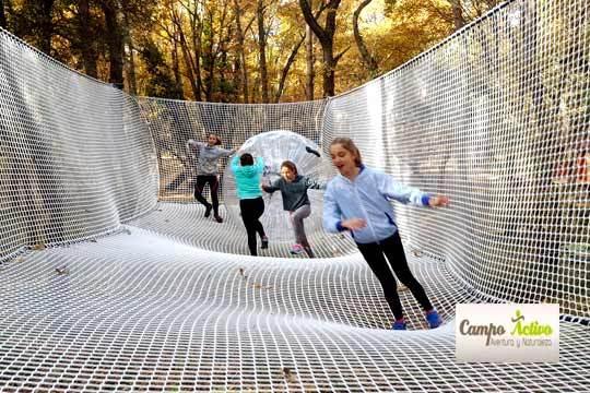 Diviértete a lo grande en el Parque de Aventura entre árboles de Campo Activo con 8 circuitos para niños y adultos ¡Un espacio único en La Rioja!