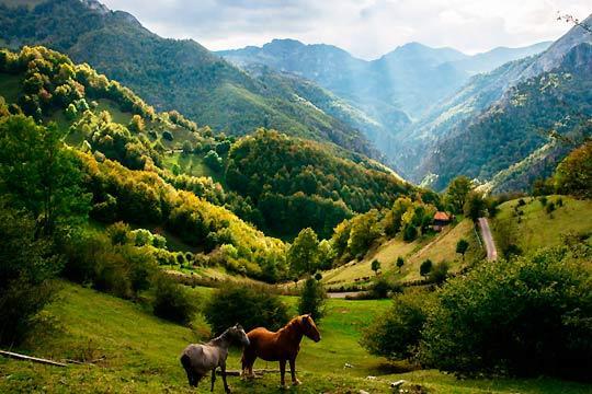 En el puente de diciembre disfruta de Asturias con una estancia de 4 o 5 noches con desayunos en el hotel Entremontes