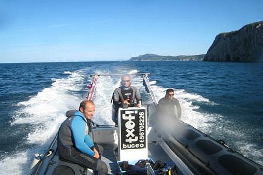 Excursión de 2 horas en barco siguiendo el recorrido de los cetáceos para poder ver ballenas en la costa de Bizkaia ¡Vive una experiencia irrepetible con Txof! Buceo!