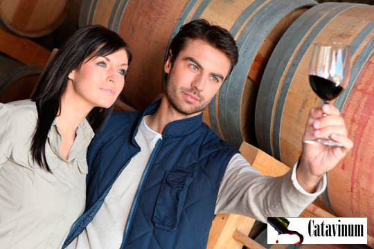 Descubre 5 apasionantes vinos seleccionados para la ocasión ¡Seas particular u hostelero no te lo puedes perder!