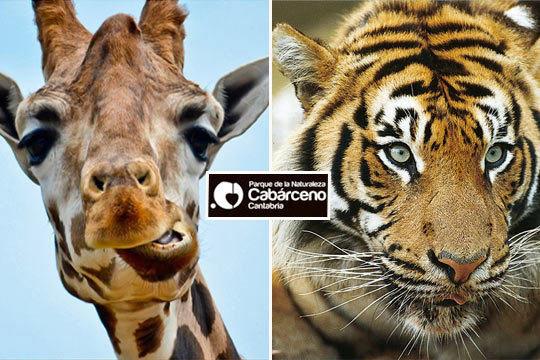 Descubre en familia los animales del Parque de la Naturaleza de Cabárceno en Cantabria