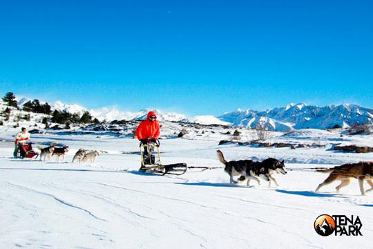 Disfruta de la nieve con un pack de actividades de Tena Park que incluye trineo de perros, raquetas de nieve y construcción de iglús