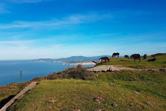 Disfruta de la montaña y el mar de Bizkaia con una estancia de 1 o 2 noches en un apartamento de la confortable casa Chaoetxea