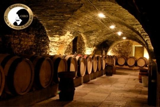 ¡Aprende a disfrutar del vino! Siente la cultura del Vino en 3D y participa en un Curso de iniciación a la cata de vinos en Laguardia + Botella de vino de calidad