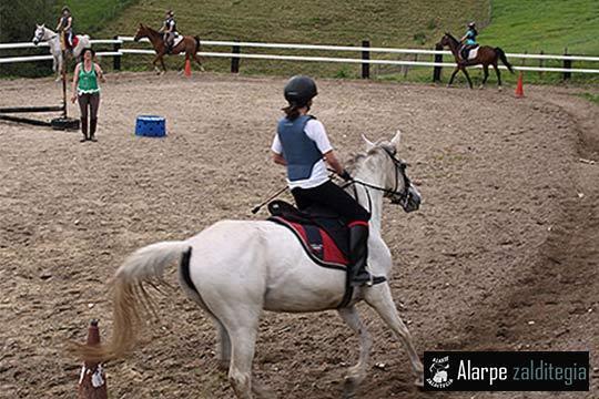 Ven a disfrutar unos días de campamentos con animales, actividades deportivas y coching con caballos en inglés o euskera