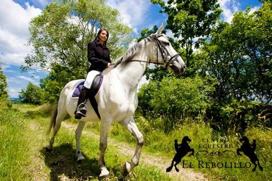 Disfruta de más de dos horas inmerso en el mundo de la hípica con una ruta a caballo + volteo + clase con monitor ¡En el centro ecuestre El Rebolillo!