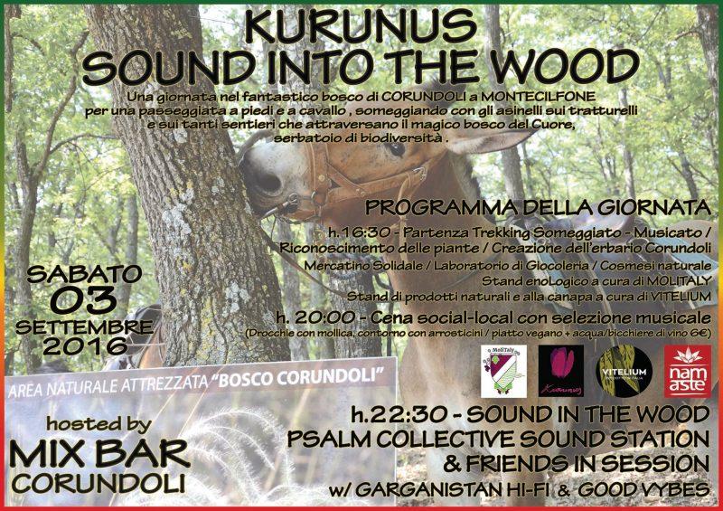 EVENTI – Il bosco di Montecilfone in Sound