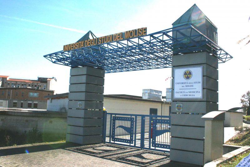 UNIMOL – Summer School 2017, aperte le selezioni per 10 studenti