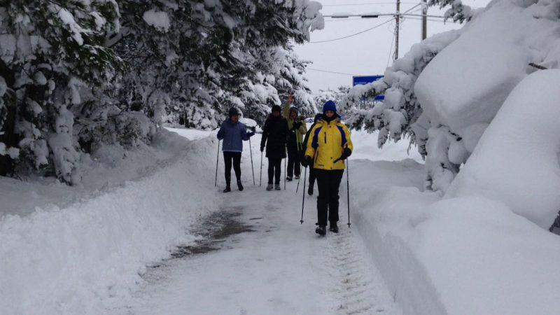 """Le appassionate del """"Nordic Walking"""" in giro per Campobasso"""