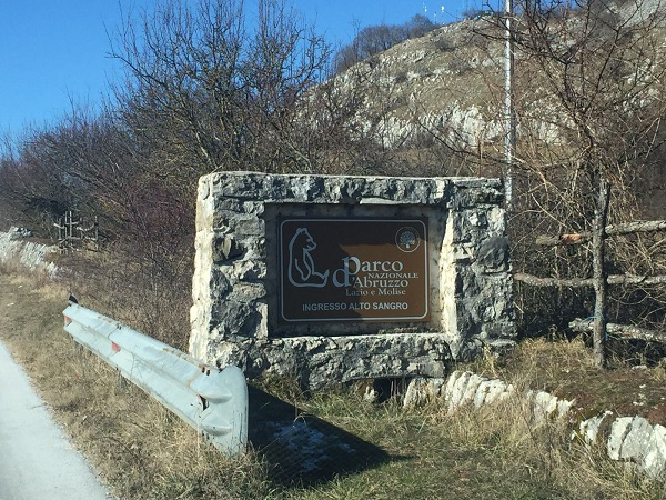 Aperte le selezioni per il nuovo direttore del Parco nazionale d'Abruzzo, Lazio e Molise