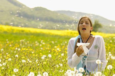 Le allergie: aumenteranno nel 2020