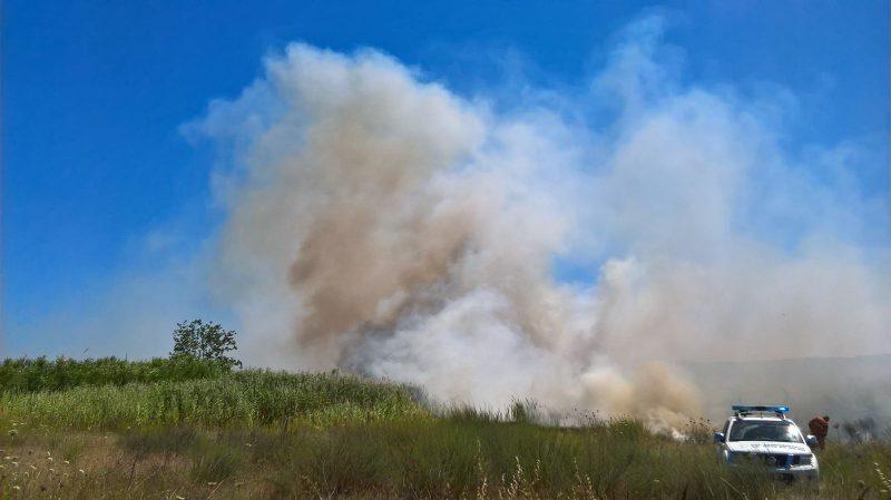 Vasto incendio tra Molise, Campania e Lazio (la segnalazione)